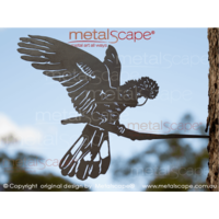 Black Cockatoo landing on tree mount spike
